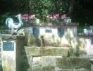 Brunnen_2