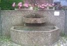 Brunnen_9