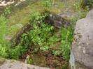 Steinenschloss_22